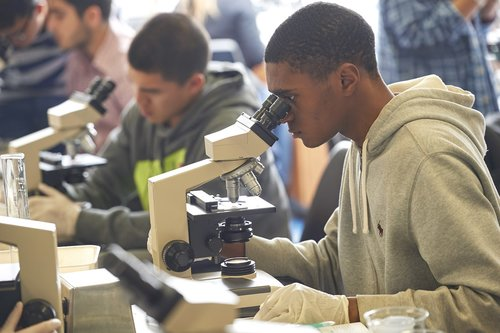 Two students working at microscopes in a lab in the Science Building.