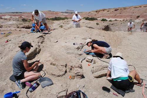 Students excavate something in some sort of desert environment.