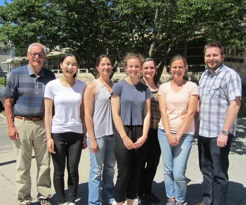 Bruce Branchini and bioluminescence research group.   from left to right: Bruce Branchini, Ting Lan Cao, Danielle Fontaine, Bridget Higgins, Catherine Florentine, Tara Southworth, and Brian Huta.