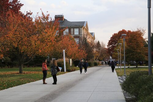 A lovely autumn afternoon on the Adelphi campus.
