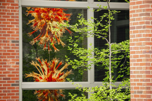 The Chihuly sculpture that hangs inside Reid Campus Center.
