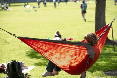 A student swings in a hammock near Ankeny Field in April 2019.