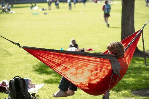 A student swings in a hammock near Ankeny Field in April 2019.