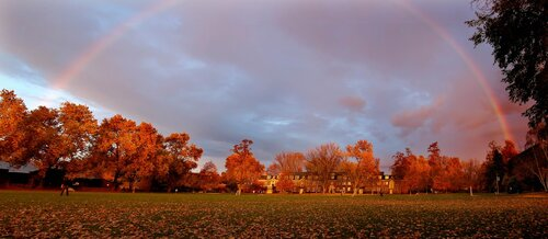 A variety of photos of fall leaves, fall color and campus around Whitman College in the  2000s.
