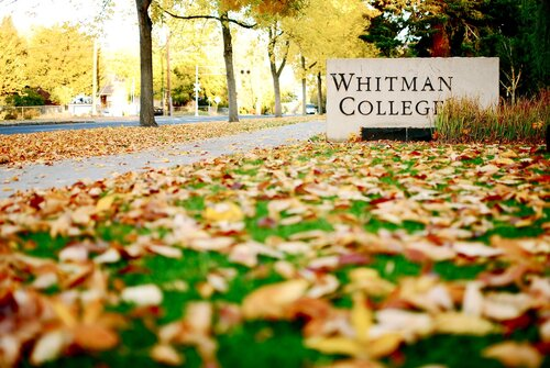 An image of the Whitman College sign surrounded by leaves on a fall day in the 2000s.